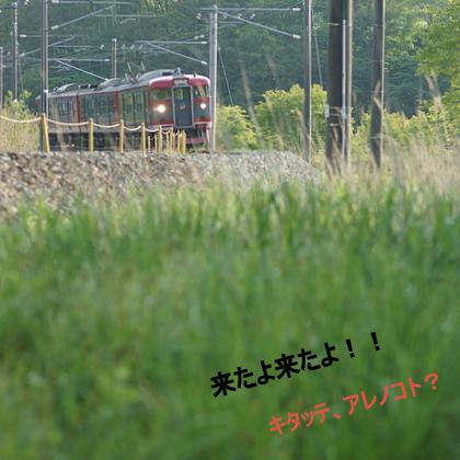 1-DSC05599.JPG