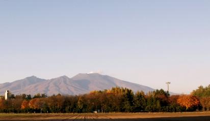 牧草地の向こうの山