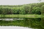 原村の池です
