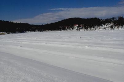 完全凍結 歩けます
