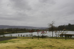雨の調整池