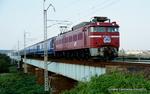 DSC06547-001.JPG