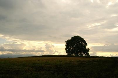 梅雨空と夏雲