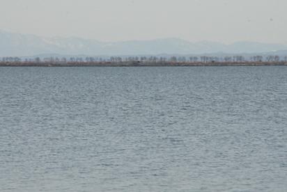 八郎潟残存湖