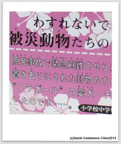 DSC08866.JPG