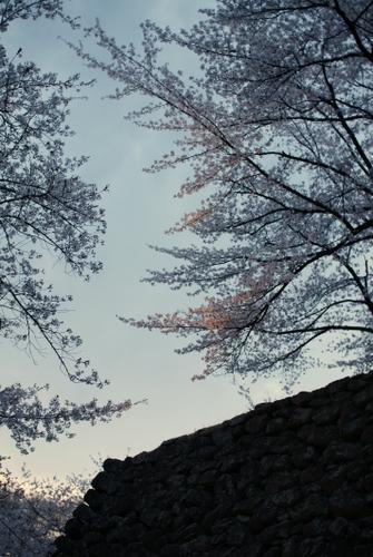 城壁の向こうに陽は沈む