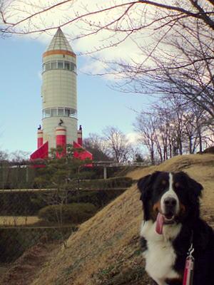 高さ35メートルのコスモタワー
